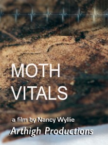 Moth Vitals  WYLLIE
